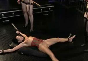 diary lady escort erotikmarkt wesel